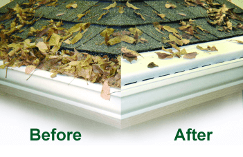leaf-free-before-after